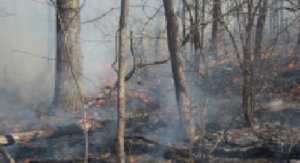 EPA Webinar on Wildfire Impacts to Drinking Water